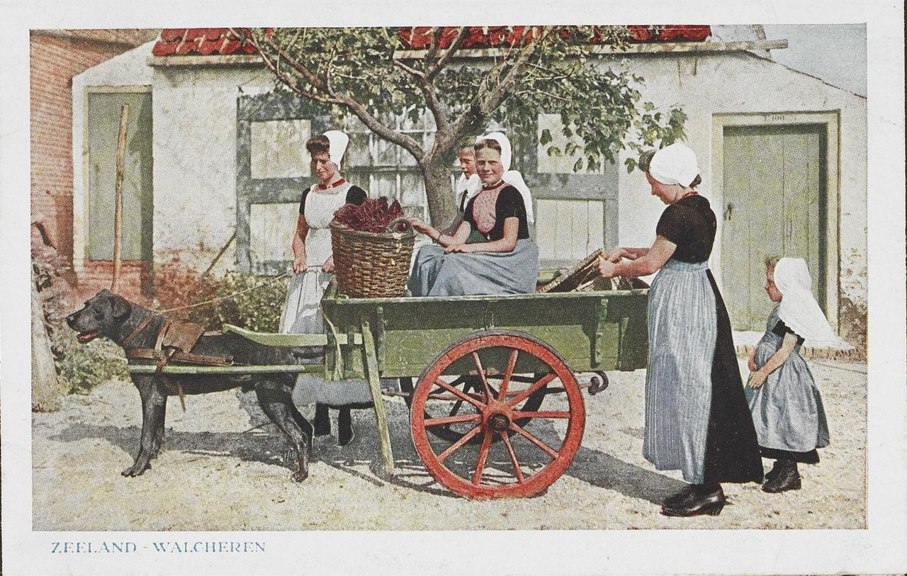 Ansichtkaart in kleur, met vrouwen en meisjes in Walcherse streekdracht