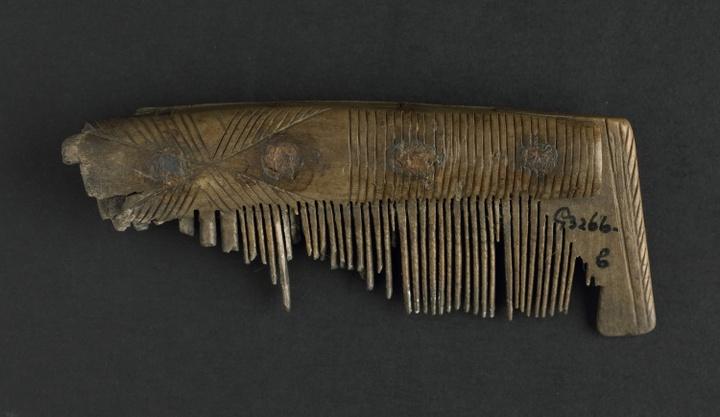 Kam gevonden bij opgravingen onder het prinsenlogement in de Abdij van Middelburg