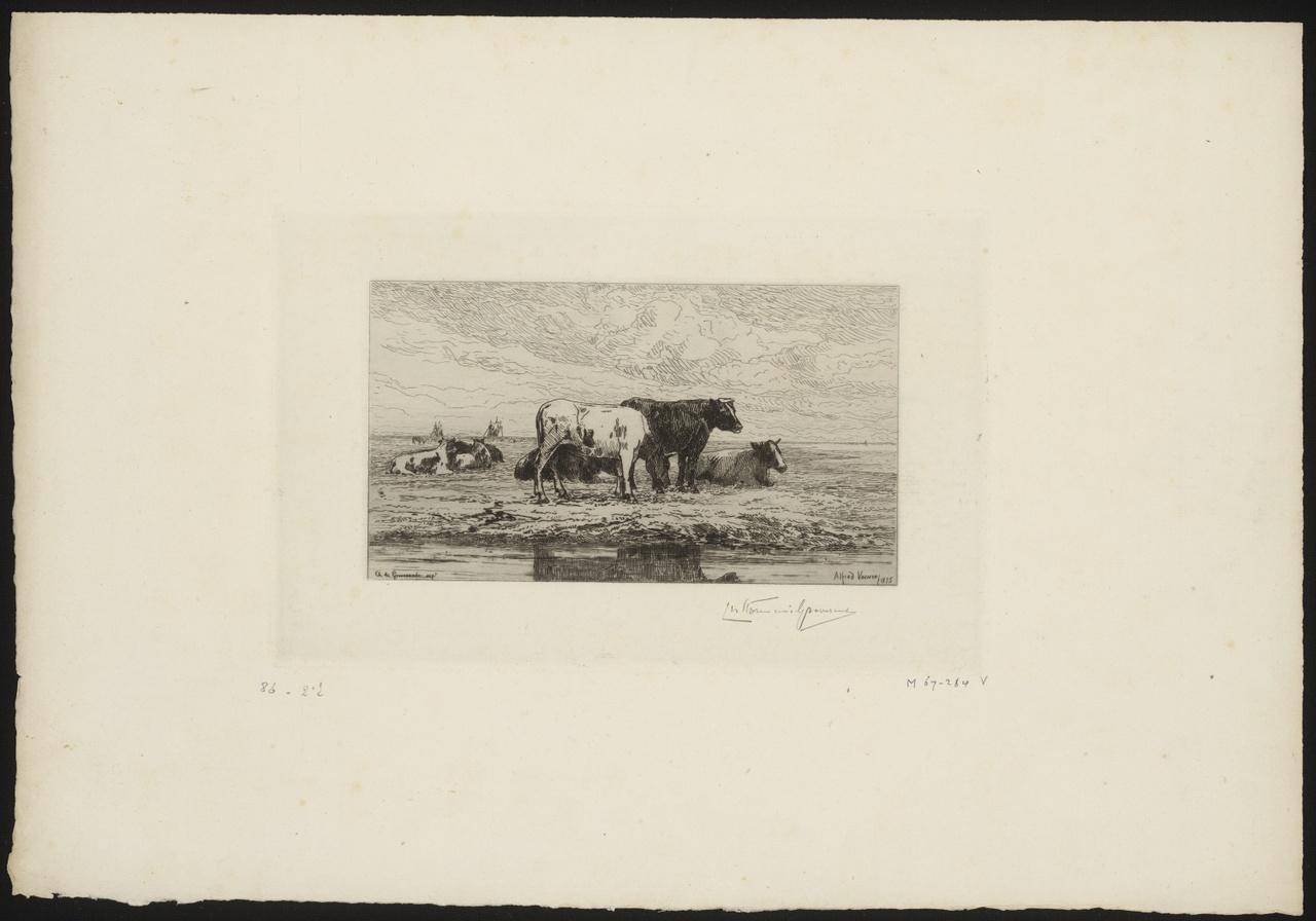 Koeien aan de oever van de Schelde, Carel Nicolaas Storm van 's-Gravesande