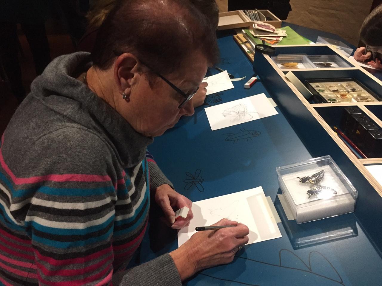 tekenen-met-goedaert-in-zeeuws-museum-2.jpg