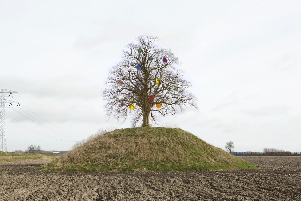 Dit is Zeeland Boom op Vliedberg liggend Foto Zeeuws Museum Jaap Scheeren.jpg